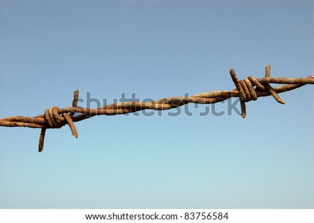Barbed Wire Detail Against Blue Sky Close-up of two barbs on a barbed wire fence, taken against a blue sky.