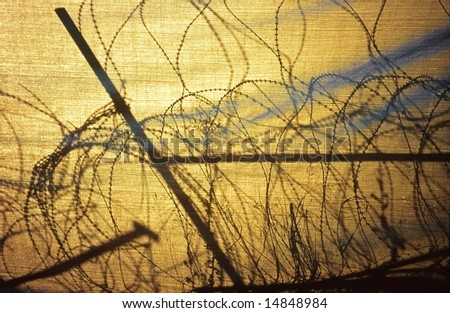 Barbed wire entanglement in Nicosia, between Cyprus et Turkey zones. The sun draws its silhouette on a tarpaulin.