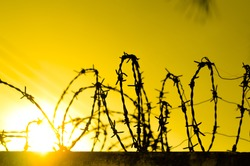 Barbed wire fence and Light of Hope.