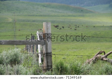 Barbed Wire Fence around pasture - Wyoming