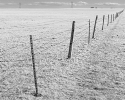Barbed Wire Fence at Pawnee National Grassland, Colorado.