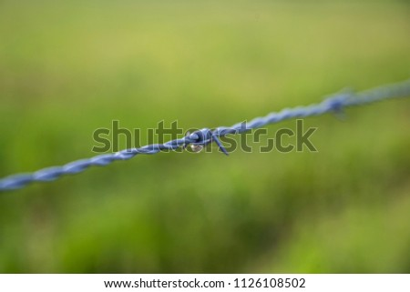 Barbed wire fence close up wrapped point sharp macro green grass outside shallow depth of field farm ranch