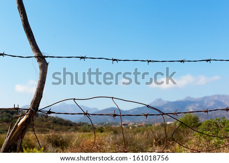 Barbed wire fence in counryside.