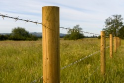 Barbed wire fence in the countryside