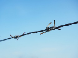 Barbed wire for enclosed areas.The rust on Barbed Wire.Wire Mesh And Sky.