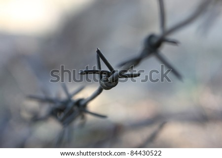Barbed wire fragment. Barbwire near the jail.