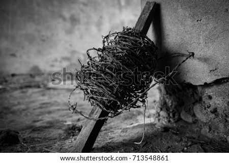 Barbed wire in abandoned fortress in Kaunas, Lithuania. Vintage design. Echo of World War 2. Rusty metal. Symbol of conscience.  #713548861