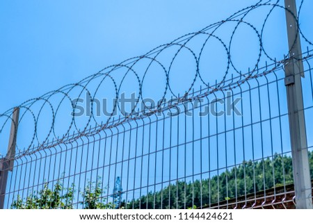 Barbed wire on a wire fence. #1144424621
