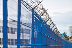 Barbed wire on blue fence of restricted area. No unauthorized entry. New fence of military border territory