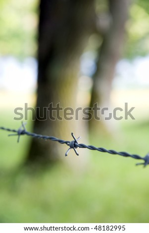 Barbed wire protecting a green meadow