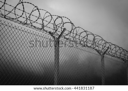 Barbed wire - restricted area, black and white Zdjęcia stock ©