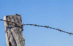 Barbed wire tack and wooden post  blue background