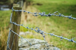 barbed wire with burred image of field, selective focus