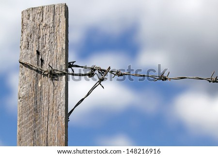 Barbed wire with sky in the background. Freedom or slavery?