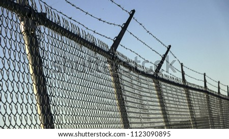 Barbed wires and steel wire mesh fence #1123090895