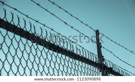 Barbed wires and steel wire mesh fence #1123090898