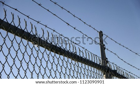 Barbed wires and steel wire mesh fence #1123090901
