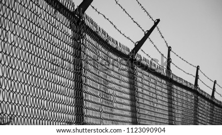Barbed wires and steel wire mesh fence #1123090904