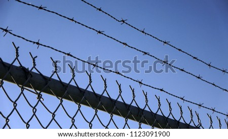 Barbed wires and steel wire mesh fence #1123091900