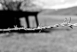 Barbedwire on a border