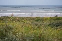 Barbwire and Scheveningen beach Netherlands, view from the duns