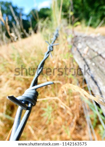 Barbwire fence in rural England #1142163575