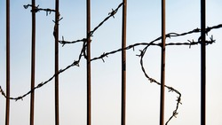 Barbwire woven between bars of a prison
