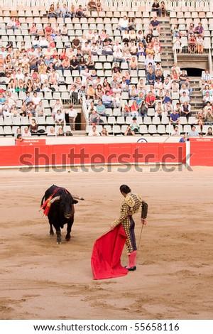 """BARCELONA - JUNE 6: """"Corrida"""" (bullfight) of bulls, typical Spanish tradition where a torero (bullfighter) kills a bull. In the picture, """"Finito de Cordoba"""". June 6, 2010 in Barcelona (Spain)."""