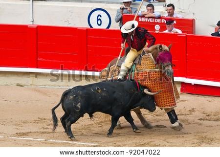 "BARCELONA - SEPTEMBER 24: ""Corrida"" (bullfight) of bulls, typical Spanish tradition where a torero (bullfighter) kills a bull. September  24, 2011 in Barcelona (Spain)."