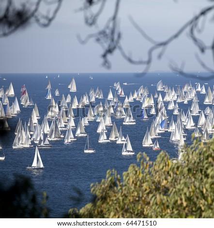 Barcolana, The Trieste regatta