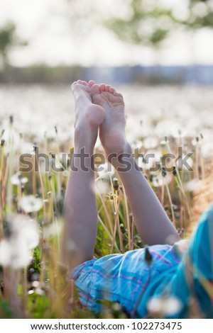 bare feet of a young girl lying in a dandelion meadow - stock photo
