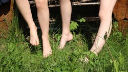 bare feet of two children sitting on a wooden bench immersed in the tall green grass of the sunny lawn, the pleasure of touching the fresh summer grass on the skin of children's feet