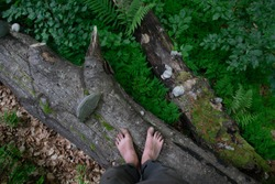 bare feet walking along the forest path close up photo