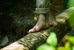 Bare feet walking on a log in the middle of the forest with the morning light
