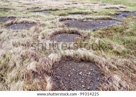 Bare patches of permafrost, surrounded by withered grass
