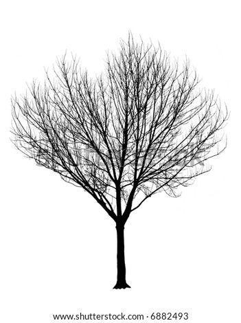 Bare Dead Tree Clip Art. Bare Dead Tree · By: OCAL 8.1/10 53 votes stock