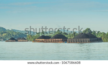 barges full of coal anchored on Mahakam riverbank waiting to be transported #1067586608