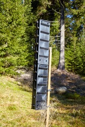 Bark beetle pheromone trap in a mountain forest, selective focus.