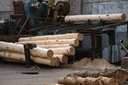 Bark removal from large logs on sawmill. Preparation of the wooden logs to sawing on a cutting line on a saw mill. Lumber industry. A pile of logs lie on a platform. Processing of timber at the