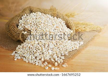 Barley grain in wooden background Barley grain is raw material Stockfoto ©