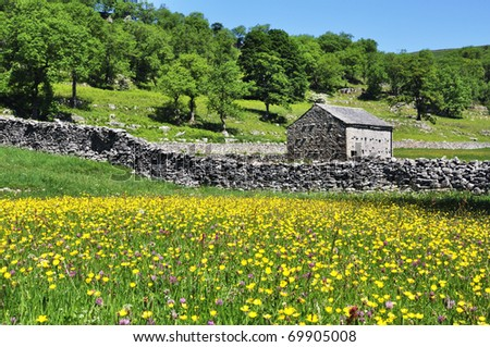 Barn and field of summer flowers in the Yorkshire dales