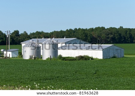 Barn and Silo Complex A small barn and a pair of grain silos surrounded by a soybean crop on a family farm in rural Ohio