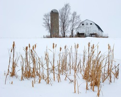 Barn and silo during Midwest winter