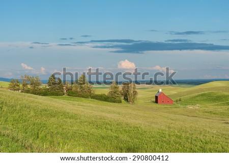 Barn and wheat fields at dusk, Moscow, Idaho #290800412