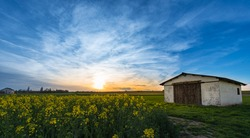 Barn in the winery  and flower field in Germany with HDR blue sky