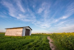 Barn in the winery  and flower field in Germany with HDR blue sky sunset