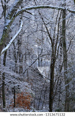 barn in the woods with snow