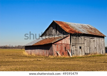 Barn rusted and falling apart against a blue sky and golden early spring field