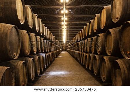 barrels in the wine cellar ...