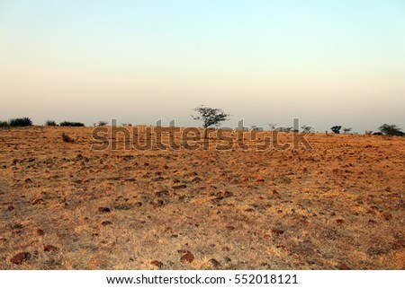 Barren land of a East heisphere
